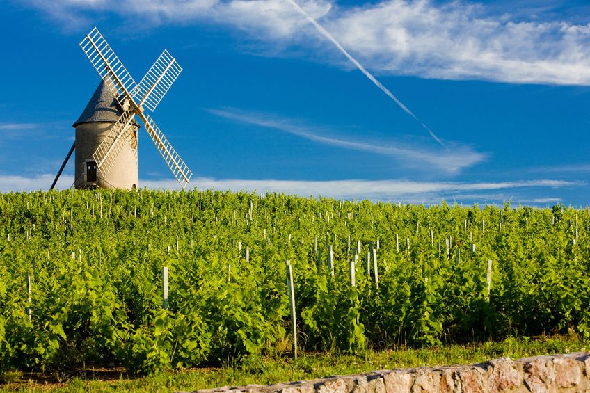 beaujolais vineyard windmill vacation rentals